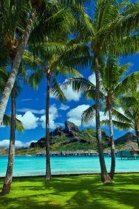 6958e4db172256184154383947f1aaec--bora-bora-island-beautiful-beach